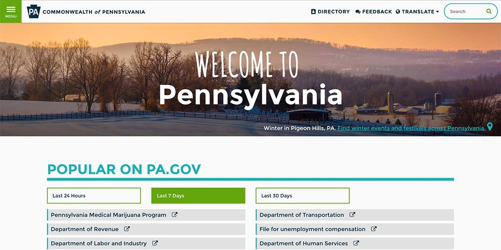 Graphic of the new Pa.gov site search tool on the homepage.