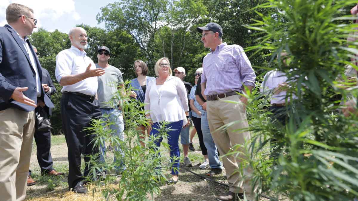 Governor Tom Wolf inspects growing hemp