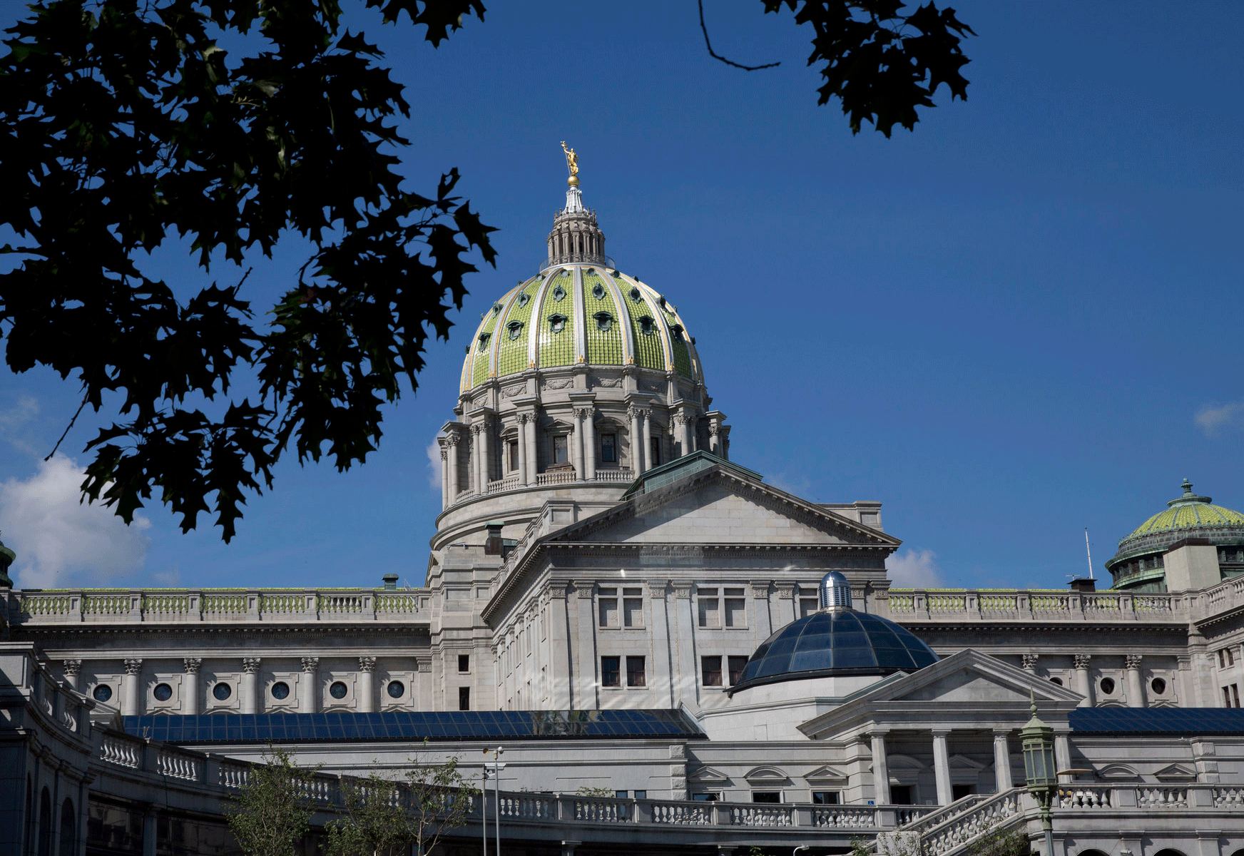 Pennsylvania Capitol Building behind some leaves